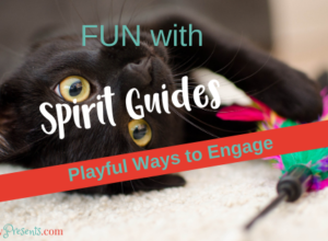 Play Spirit Guide Blog
